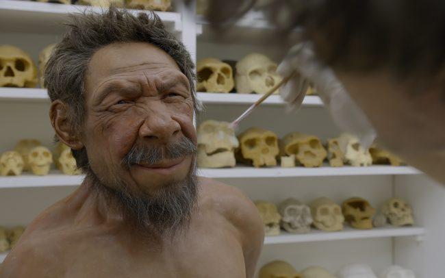 Neandertal - Ideacom International